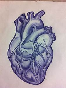 my anatomical heart that I want hanging off the tree from ...