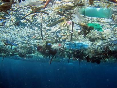 Debris Marine Impact Trash Ocean Garbage Environment