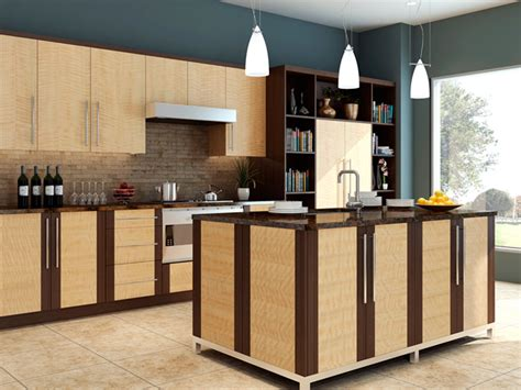 cabinets in the kitchen wood kitchen cabinets home design 5082