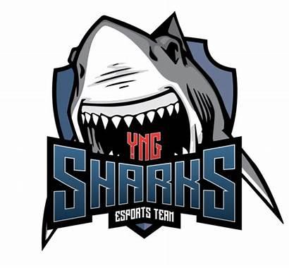 Sharks Esports Team Luken Csgo Cs Esl