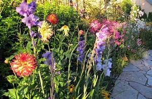 Plante De Bordure : plante de bordure liste ooreka ~ Preciouscoupons.com Idées de Décoration