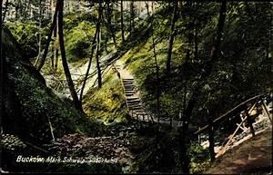 Postkarte In Die Schweiz : ansichtskarte postkarte buckow m rkische schweiz blick in die silberkehle ~ Yasmunasinghe.com Haus und Dekorationen