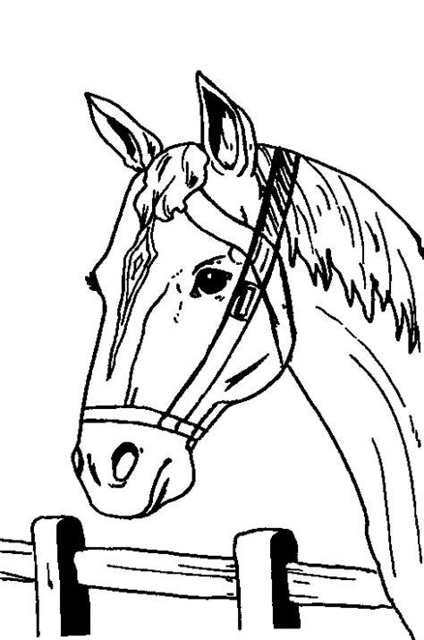 Kleurplaat Paardenhoofden kleurplaten paarden