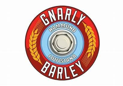 Gnarly Barley Craft Accounting Brewery Consulting
