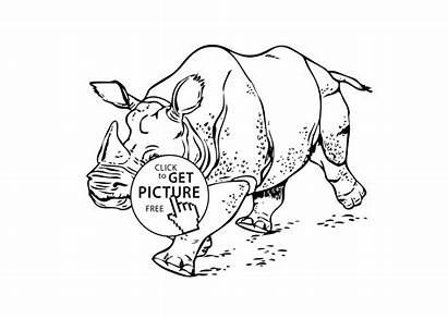 Coloring Animals Printable Pages Rhinoceros Running