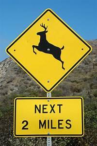 "Do Road Hazard Signs Like ""Deer Crossing"" and ""Falling ..."
