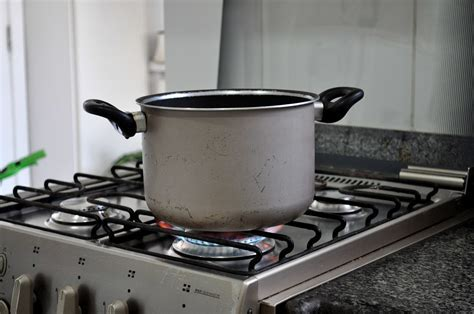 Free picture: cooking, pot, kitchen, stainless, steel, stove