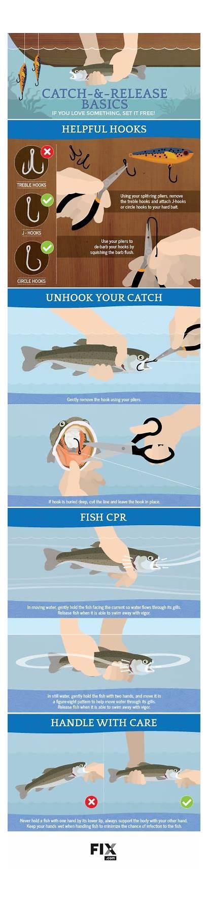 Catch Release Fishing Fix Fish Guide Tips