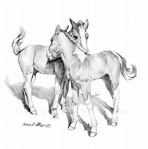 Two young horses Graphite Pencil drawing | Drawings by ...