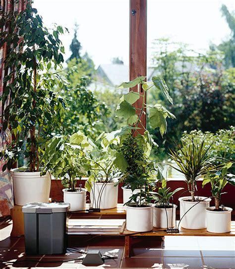 Zimmerpflanzen Im Urlaub Bewässern by Wie Ihre Pflanzen Im Haus Den Urlaub 252 Berleben 183 Ideen Zur