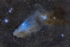 APOD: 2013 April 2 - IC 4592: The Blue Horsehead ...