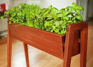 Mini jardinières et pots d intérieur aux herbes aromatiques