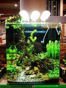 30  Stunning Aquarium Design Ideas For Indoor Decorations