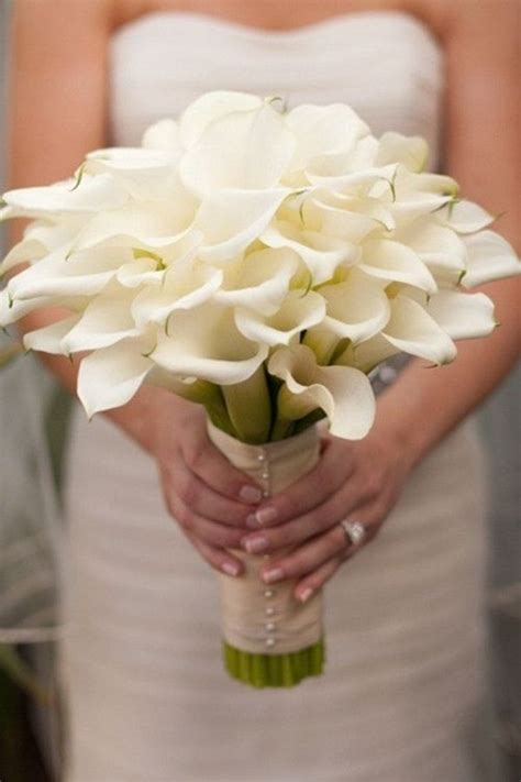 calla bouquet pictures best 25 calla lily wedding bouquet ideas on pinterest lily wedding bouquets lilly bouquet