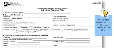 individual program plan ipp form