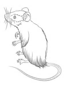mouse standing  coloring page  printable coloring