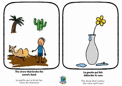 Broke Camel Straw French Idioms Vase English
