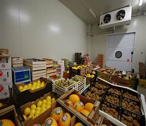 Celle frigorifere per frutta e verdura Madefrigor S r l