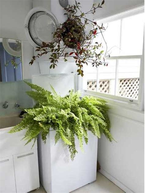 laundry room ideas  spruce  small spaces  color