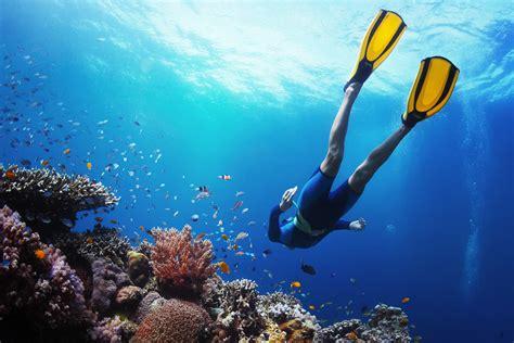 Dive Destinations by Our Favourite Dive Destinations Right Now Dive Reviews