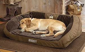 dog beds memory foam toughchew bolster beds orvis uk With dog beds near me