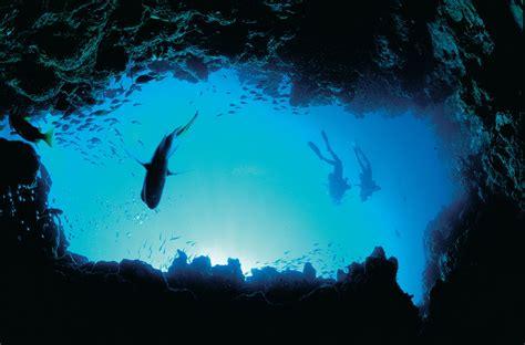 ningaloo reef life   human