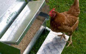 Blé Pour Poule Pas Cher : abreuvoir pour poules fait maison ~ Carolinahurricanesstore.com Idées de Décoration