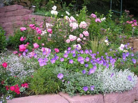 Rosenbeet Anlegen Beispiele by Blaue Blumen Mein Sch 246 Ner Garten Forum