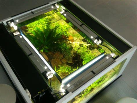 aquarium 300l pas cher recifal ma table basse 300l aquadrien vos bacs et vos bassins