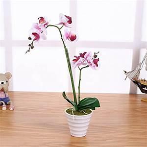 Künstliche Orchideen Im Topf : wei kunstpflanzen und weitere zimmer kunstpflanzen g nstig online kaufen bei m bel garten ~ Watch28wear.com Haus und Dekorationen