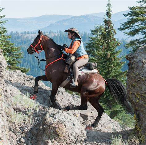 endurance horse ride riding tevis rides arabian hard horses rider trail race core laughs miles long challenging sport definitions owners