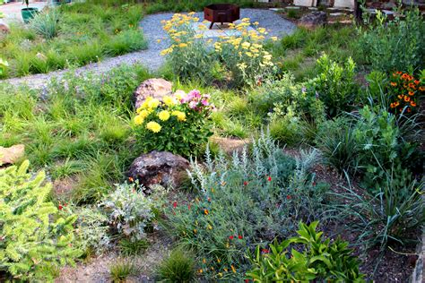 california native plants gardens  gabriel