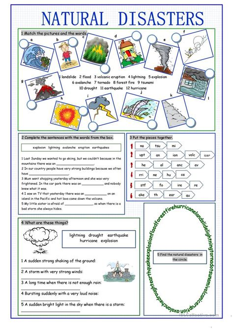 natural disasters vocabulary exercises worksheet