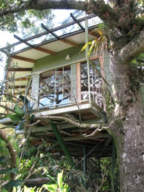 boutique canap canopy treehouses boutique hotel tree house designs