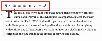 Paragraph Block Text Blocks Settings Complete Within