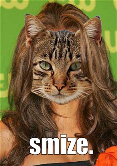 Tabby Meme - 5 cat meme predictions for 2012 comediva