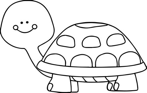 A Small Tortoise On The Carapace Of Large Tortoise