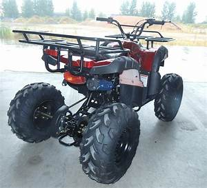 Chain Drive Transmission System125cc Kids Atv Cheap Dune