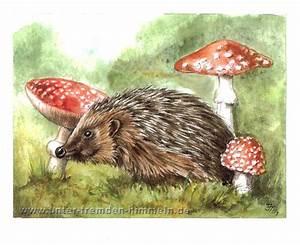 Bilder Von Igel : igel pilze tiere figural malerei von jenny thalheim bei kunstnet ~ Orissabook.com Haus und Dekorationen