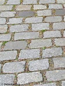Unkraut Zwischen Pflastersteinen : pflastersteine richtig verfugen wie und warum ~ Michelbontemps.com Haus und Dekorationen
