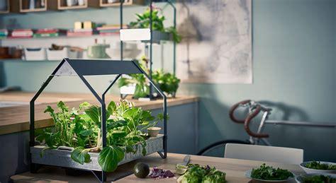 cuisine cannabis ikea vous invite à cultiver un potager d 39 intérieur