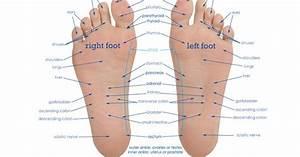 Flex Points Berechnen : vitaflex points on your feet correlate to different parts ~ Themetempest.com Abrechnung