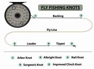 Knots Diagram