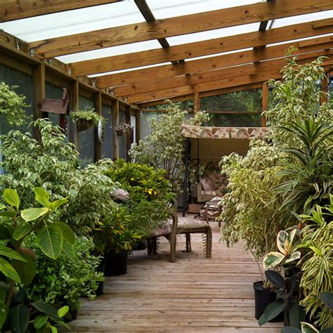 plants for sunroom inspiring sunrooms for that much needed sunshine plant conservatory and sun room ideas and designs