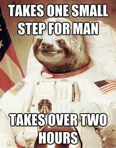 [Image - 437649]   Astronaut Sloth   Know Your Meme
