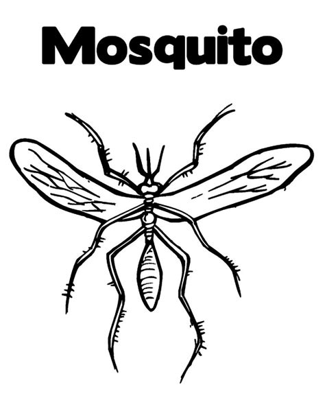 a coloring page free printable mosquito coloring pages for