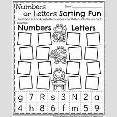 Back To School Kindergarten Worksheets  Sped  Kindergarten Worksheets, Kindergarten Classroom