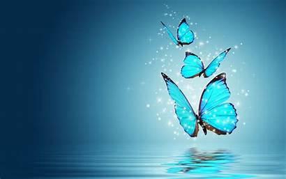 Butterfly Computer Desktop
