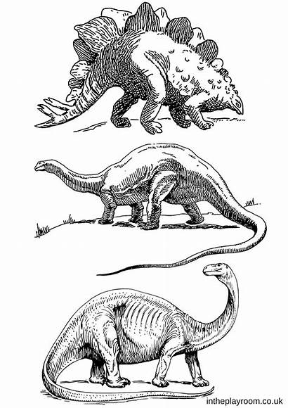 Dinosaur Pages Dinosaurs Colouring Coloring Printable Dino