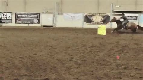 barrel racing horse rider level another take